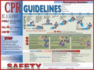 CPR Guidelines Poster