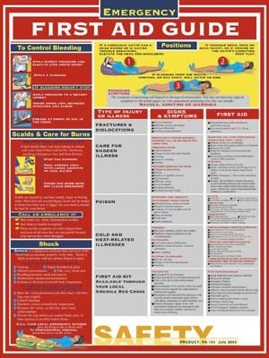 Emergency First Aid Guide Poster